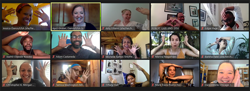 A screenshot of DanceUSA 2020 DILT Virtual Seminar